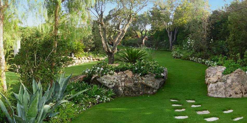 Realizzazione e progettazione giardini a roma e green for Giardino sempre verde