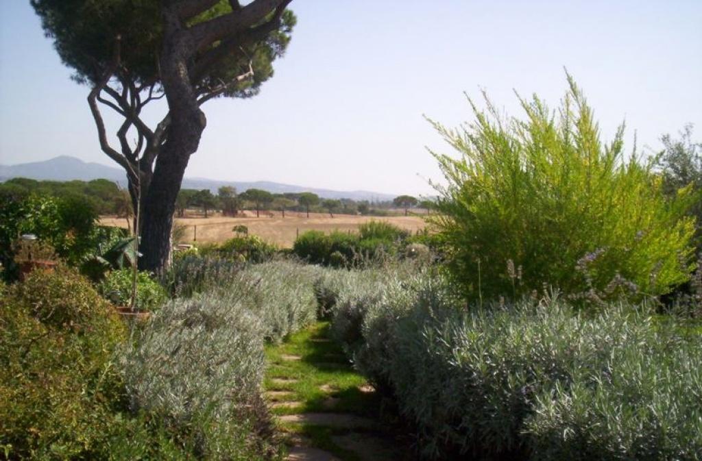 Giardino privato e green realizzazione e progettazione for Progettazione giardini lavoro