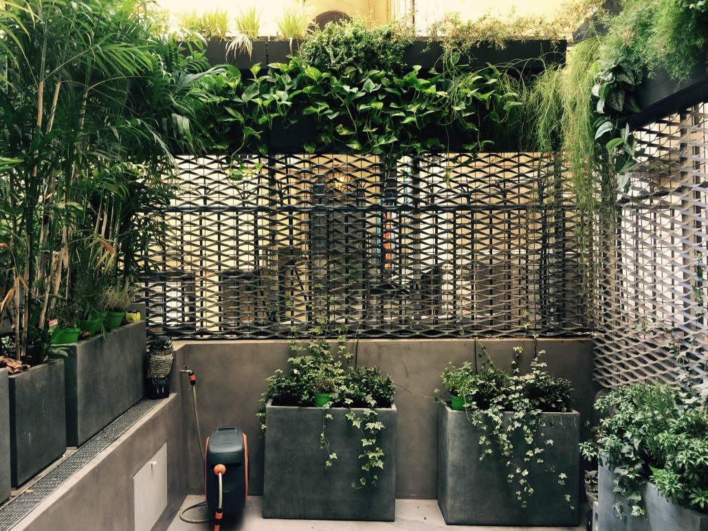 Vertical garden via del babuino roma e green for Progettazione giardini roma