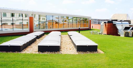 Realizzazione giardini pensili e green realizzazione e for Realizzazione giardini pensili